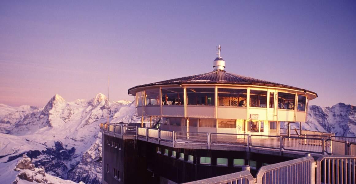 Suisse - Déjeuner au sommet sur les Alpes bernoises