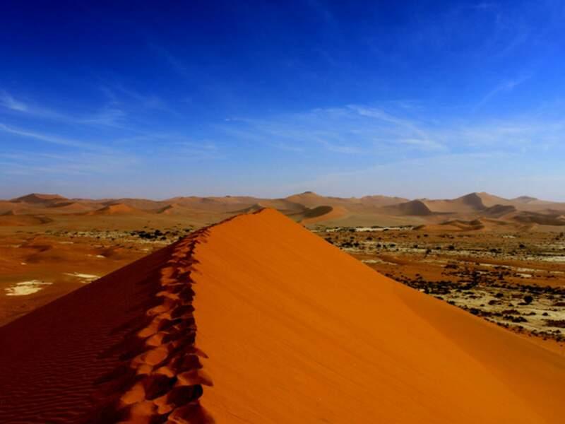 Diaporama n°7 - Namibie : à travers le désert grandiose du Namib