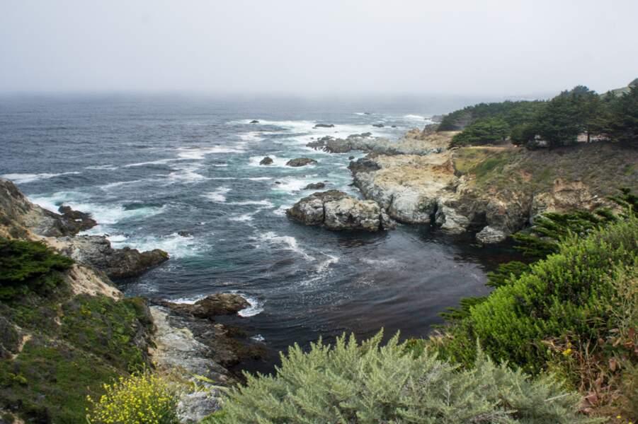 Etats-Unis - Douceur de vivre sur la péninsule de Monterey