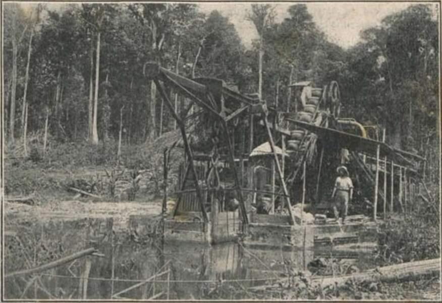 Au XIXe siècle, la Guyane attire des prospecteurs en quête de sensations fortes