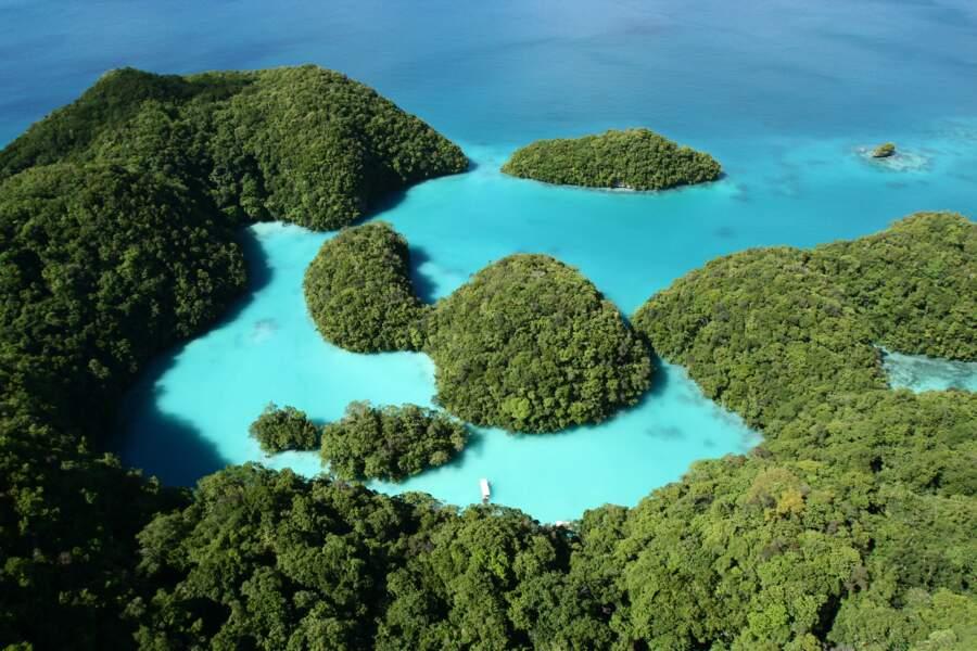 4e spot : l'archipel des Palaos