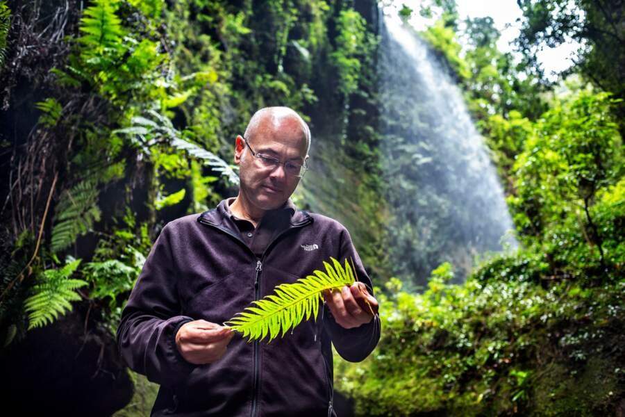 Un biologiste au chevet de «l'île verte»