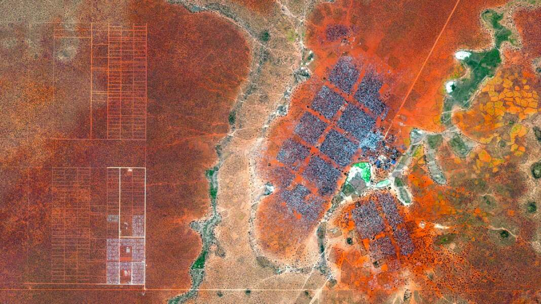 Le camp de réfugiés de Dadaab au Kenya