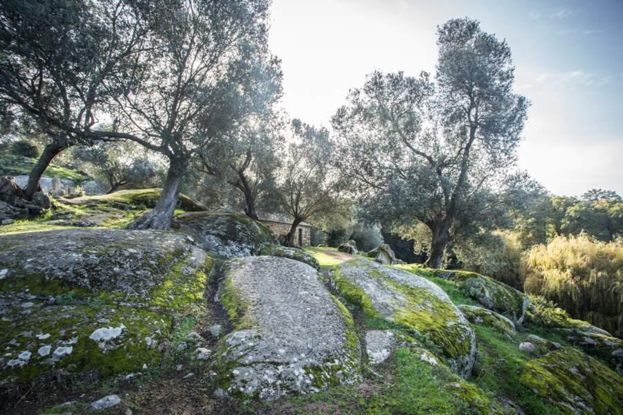 A Filitosa, on voyage dans le temps et le granite