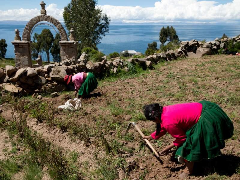 Aux touristes, les Uros n'ont pas grand chose à offrir. Pas de tissage comme chez les Quechuas.