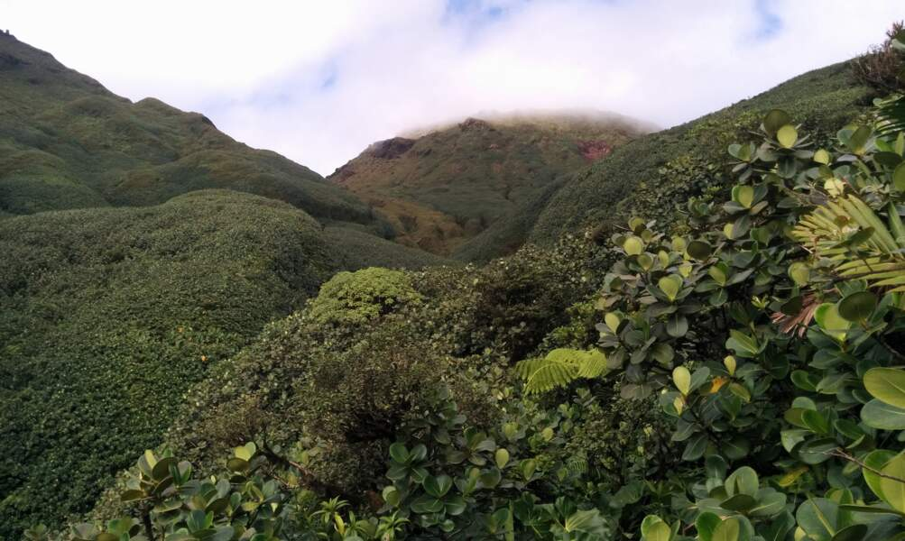 Le Parc national de la Guadeloupe
