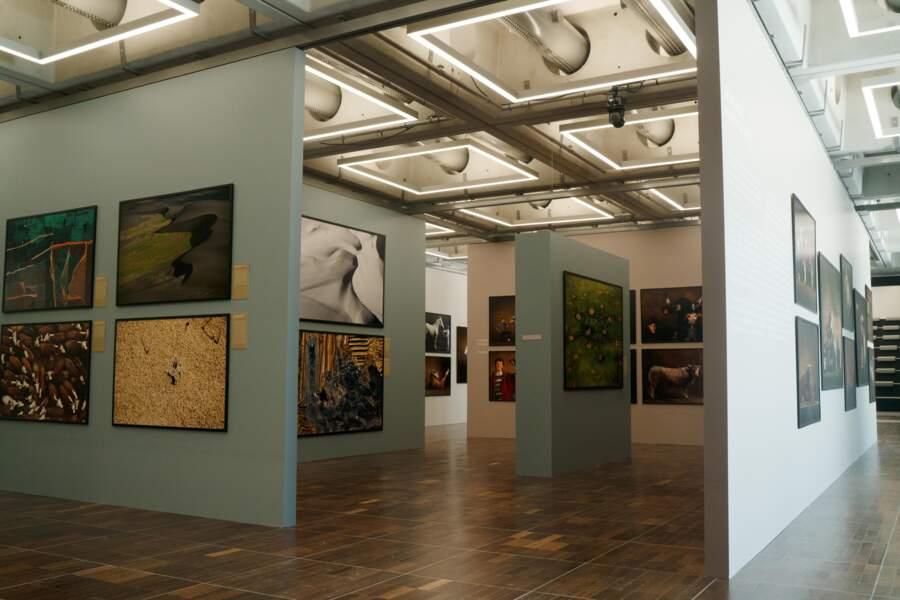 Plus de 250 photos dans un espace d'exposition de 1 200 m²