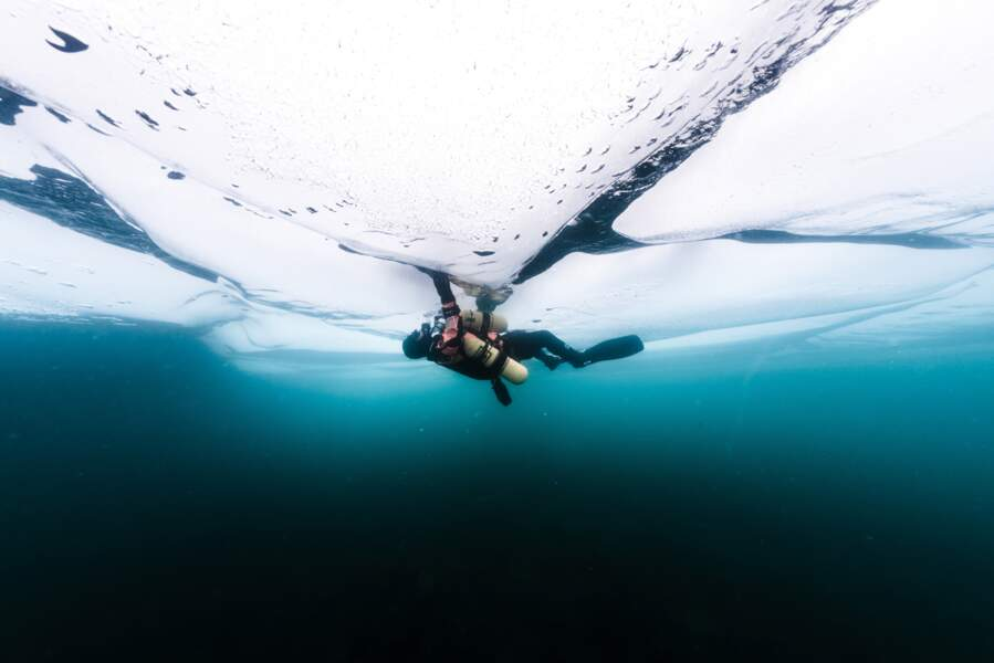 Plongée gelée