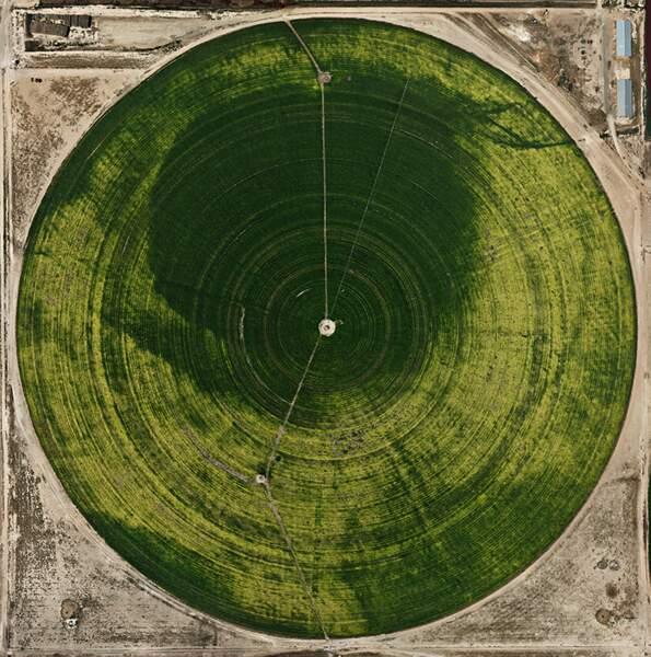 Pivot Irrigations #39, High Plains, Texas Panhandle, USA, 2012