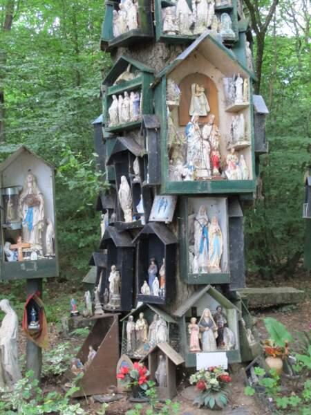 Le chêne à la Vierge de La Guerche, une chapelle d'écorce et de sève