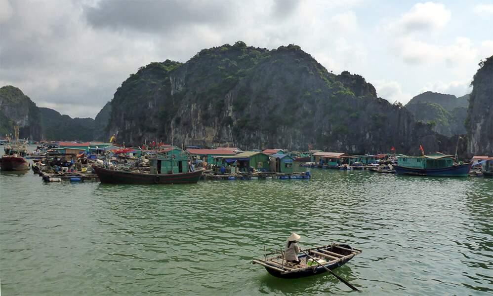 Vietnam - Cat Ba : la baie d'Along autrement…