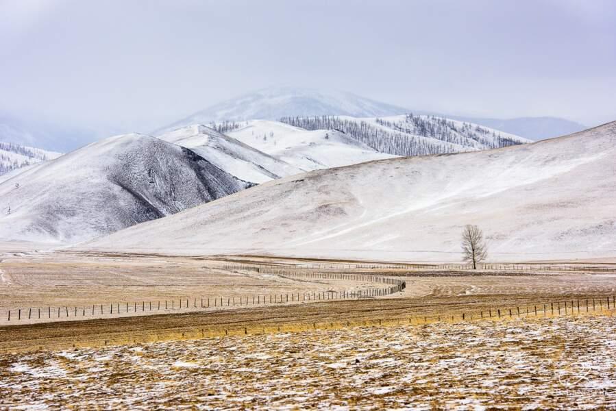 Steppes enneigées en hiver