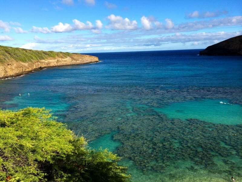 Etats-Unis - Aloha Hawaï !