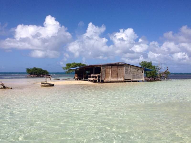 Cabane perchée ou cabane sur mer, une autre façon de découvrir la Guadeloupe