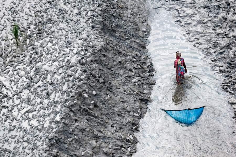 Femme pêchant au filet sur un bras du Delta, au sud de Padmapukur, dans district de Khulna, au Bangladesh