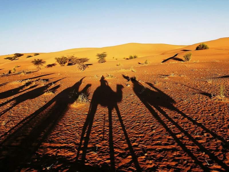 Diaporama n°9 : Mauritanie, au pays des Imraguen
