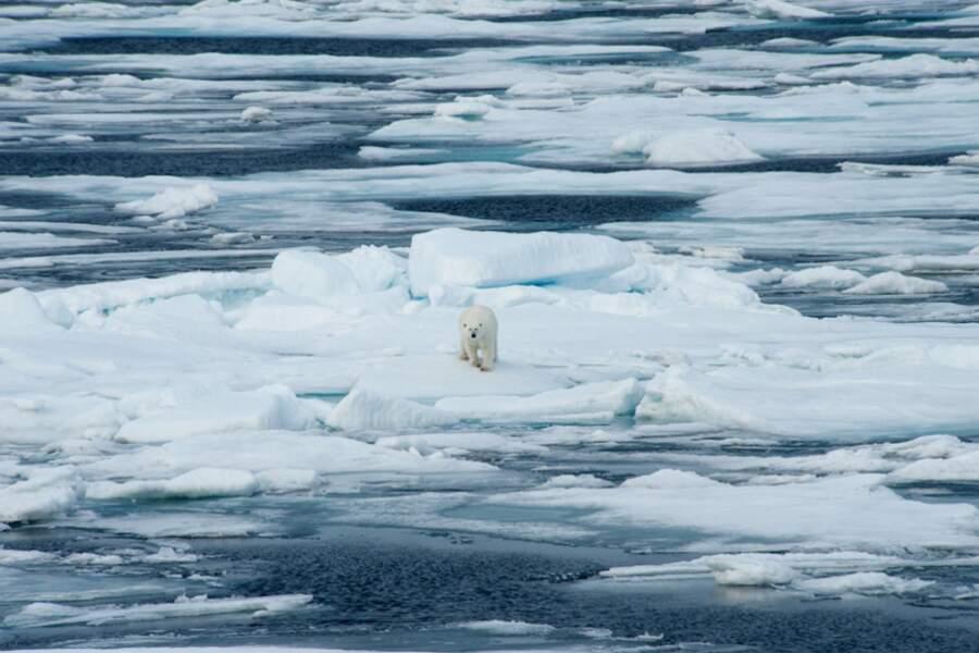 Mer de Baffin - Arctique