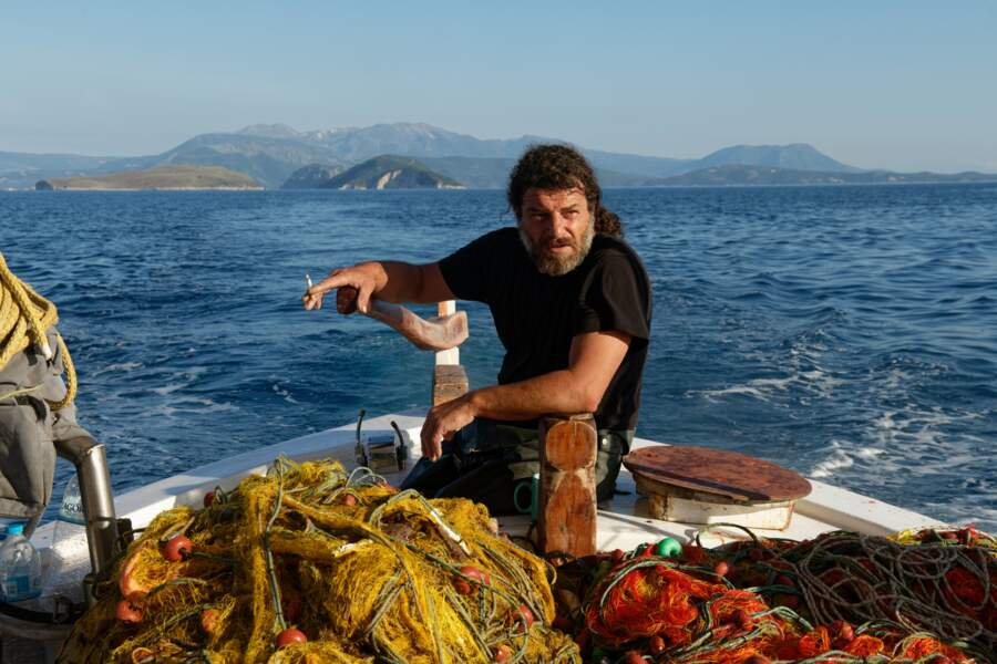 Des phoques dans la zone de pêche
