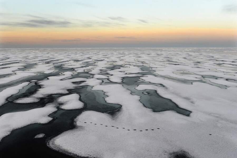 Passage du Nord-Ouest - Arctique