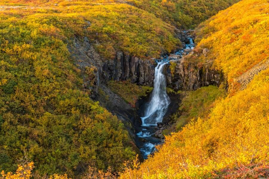 Cascade Hundafoss dans le parc national de Skaftafell, Islande