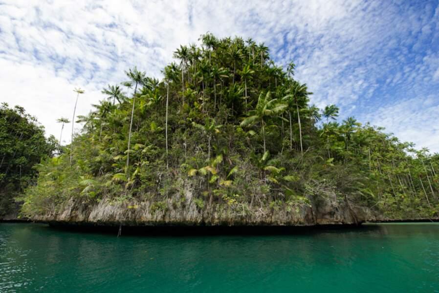 Triton Bay (Indonésie)
