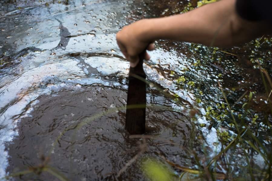 Mare de pétrole non loin de Lago Agrio