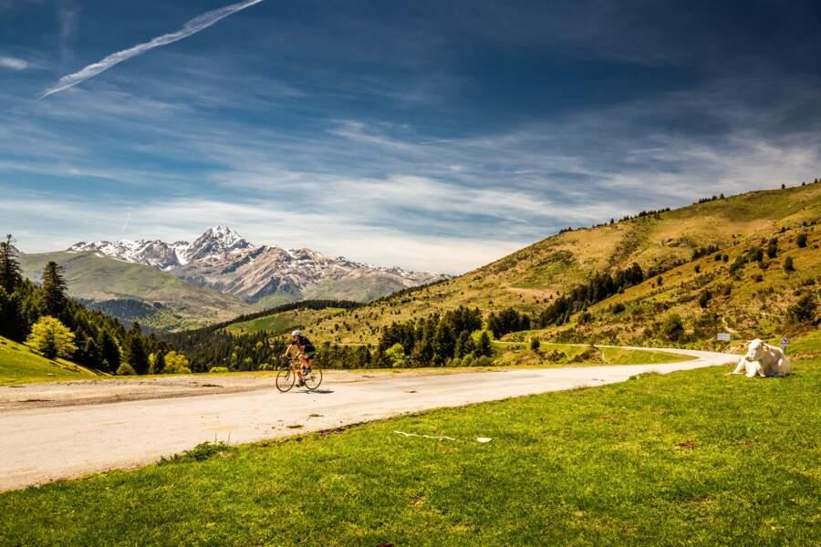 Vue sur les Pyrénées depuis le col d'Aspin, 1489 m