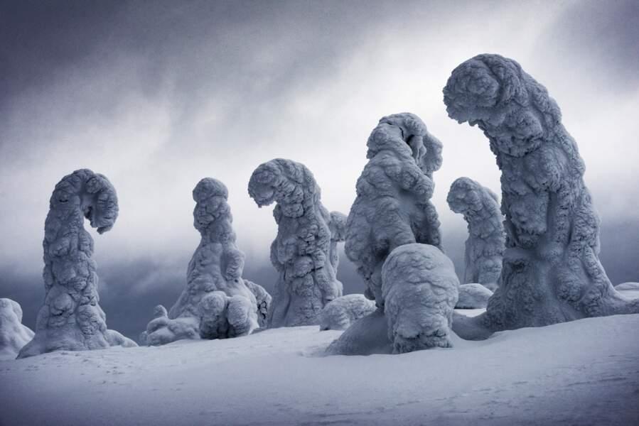 """Ignacio Palacios (Australie), 1er prix de la catégorie """"Neige et glace"""""""