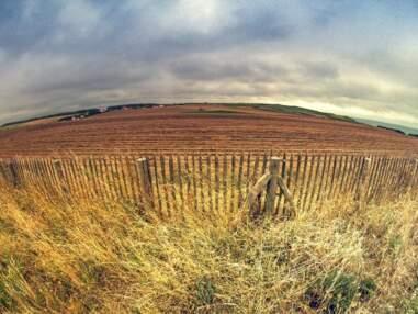 Les plus belles photos de la Communauté - du 24 au 30 novembre 2012