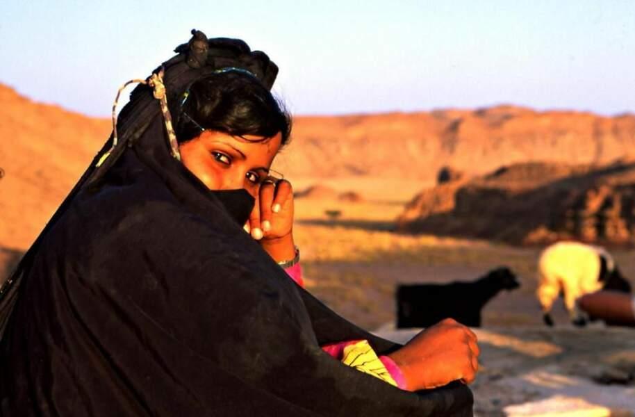 Photo prise dans le désert du Sinaï (Egypte), par sellig06