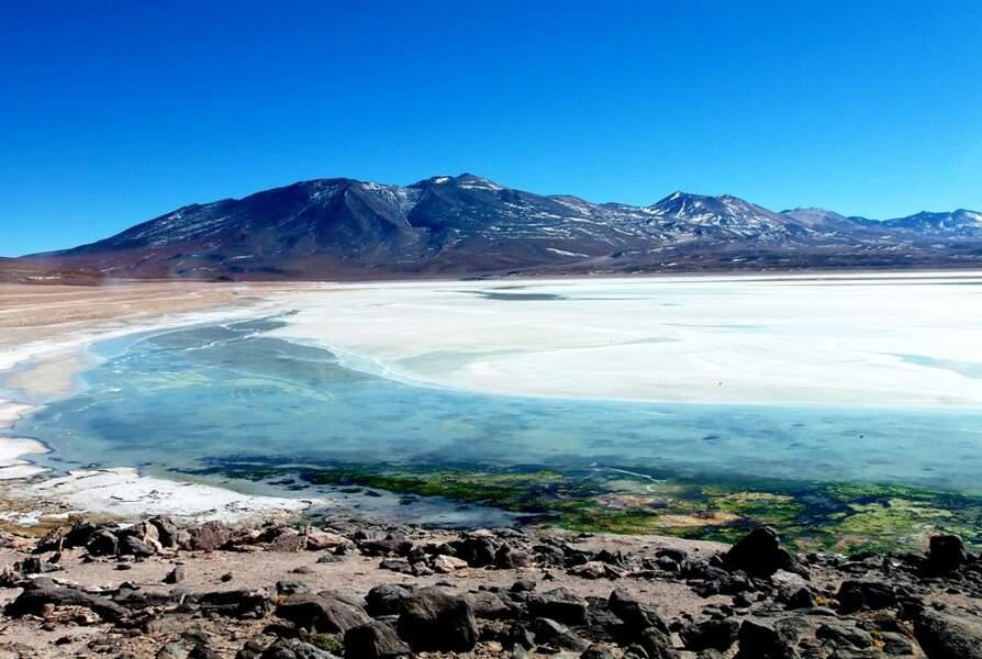 Les merveilles de l'altiplano bolivien