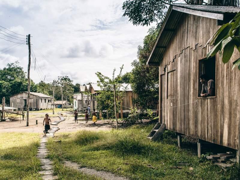 Les villageois se sont installés entre la jungle et le fleuve, dans un écosystème préservé