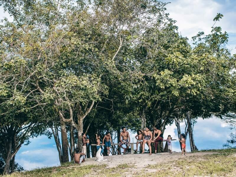 Dans la forêt nourricière, les habitants ne prélèvent plus que le minimum vital