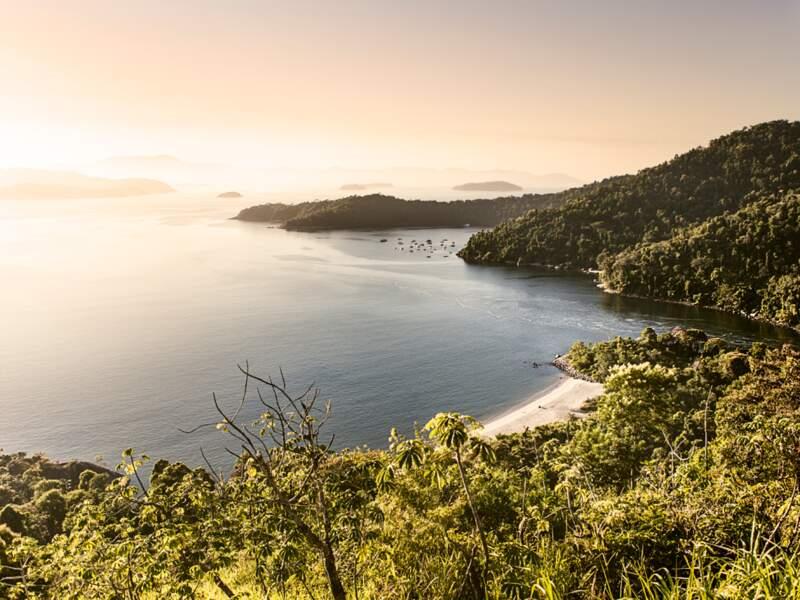 Des vagues de forêt tropicale viennent mourir dans le bleu océanique