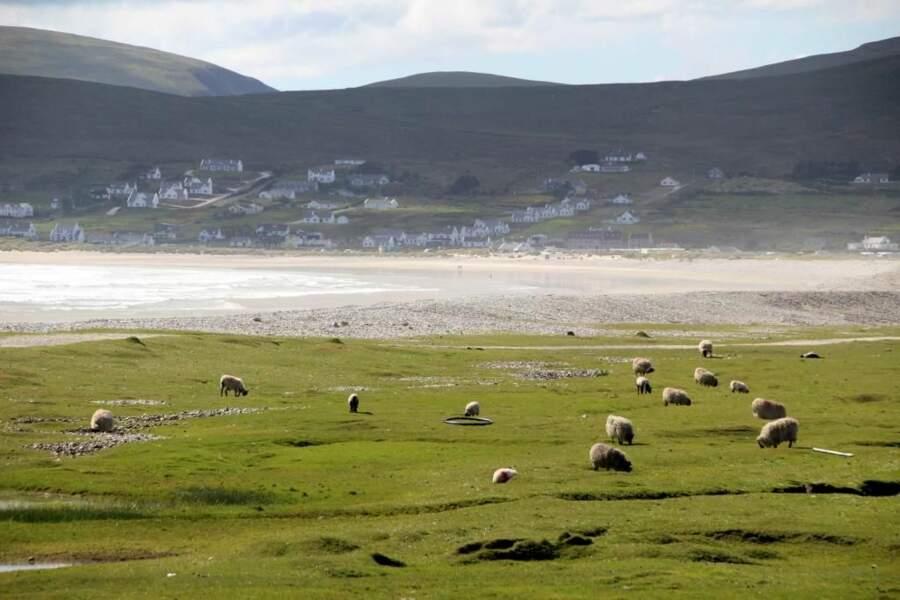Photo prise sur Achill Island (Irlande) par le GEOnaute : jpbourdeilh