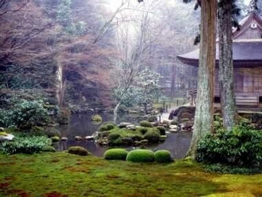 Les plus belles photos de la Communauté GEO : le Japon
