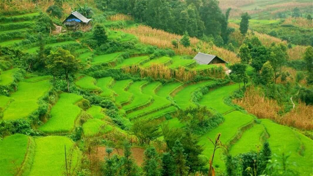 Photo prise au Vietnam par le GEOnaute : lilyjo