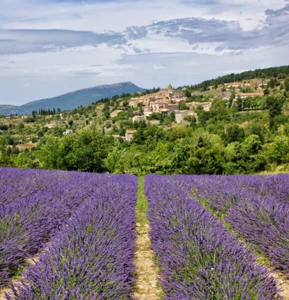 Un tour en Provence