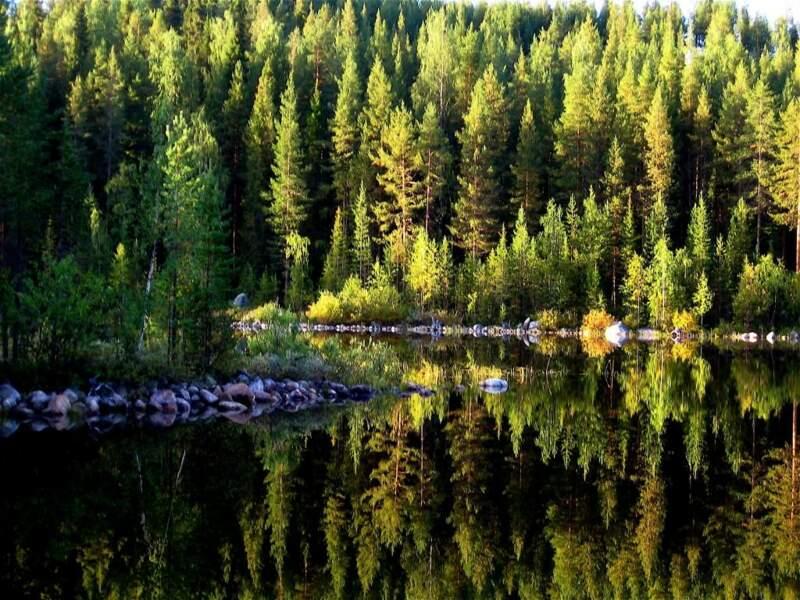 Photo prise en Laponie suédoise, par la GEOnaute amy