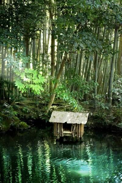 Jardin zen de Kyoto, par Romain Vaysse