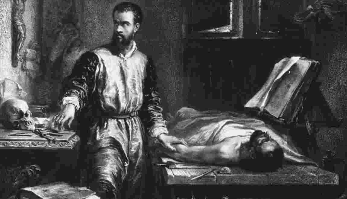 André Vésale : de pilleur de cimetières à médecin de l'empereur