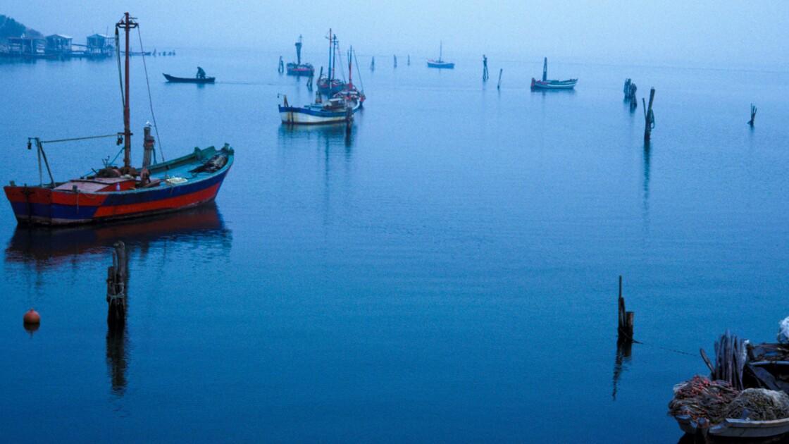 Italie : Dans le delta du Pô, la rude vie des pêcheurs de palourde