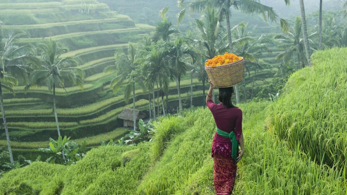Les dieux se sont arrêtés à Bali