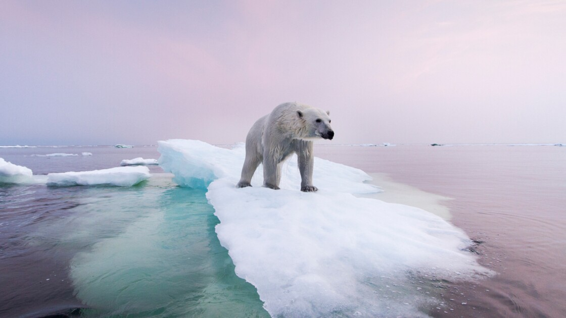 10 photos qui révèlent le visage du changement climatique - Geo.fr