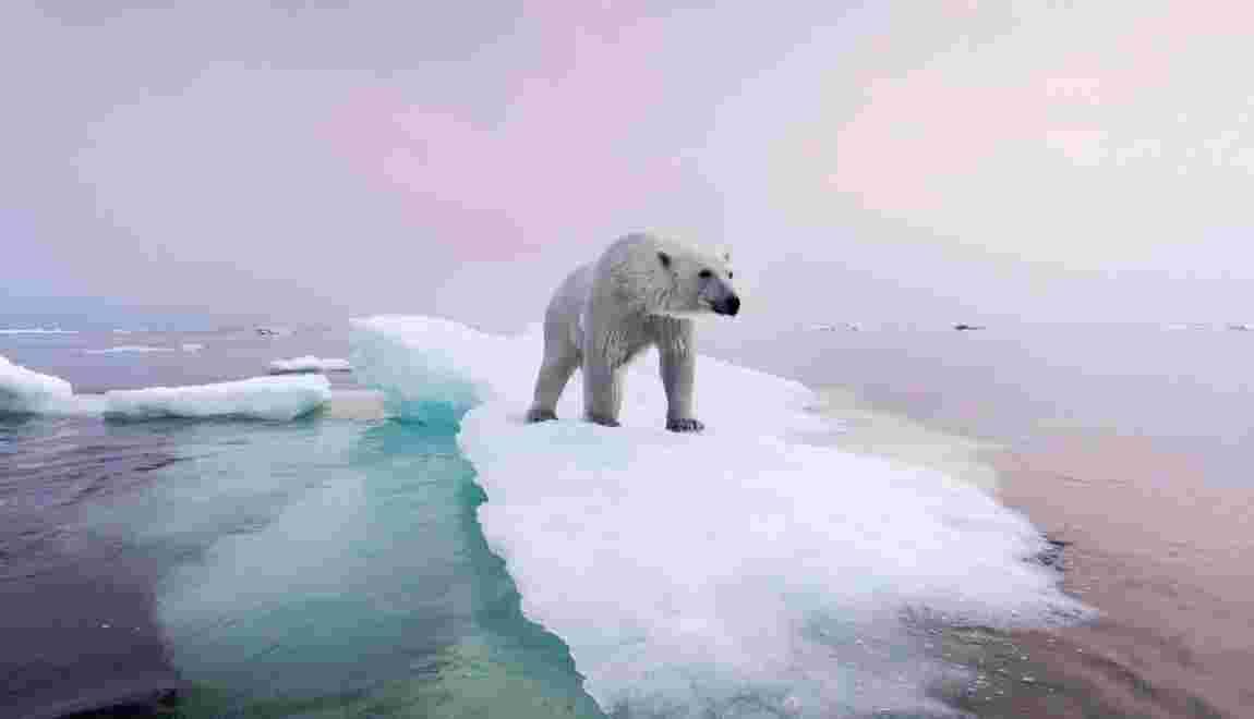 10 photos qui révèlent le visage du changement climatique