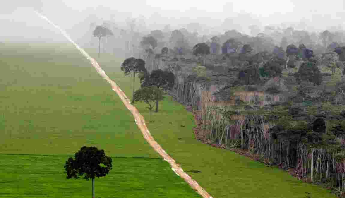 Ces projets de routes qui menacent les dernières régions sauvages de la planète
