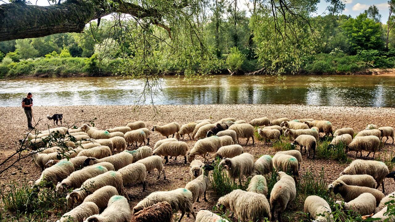 La France nature : la Bourgogne