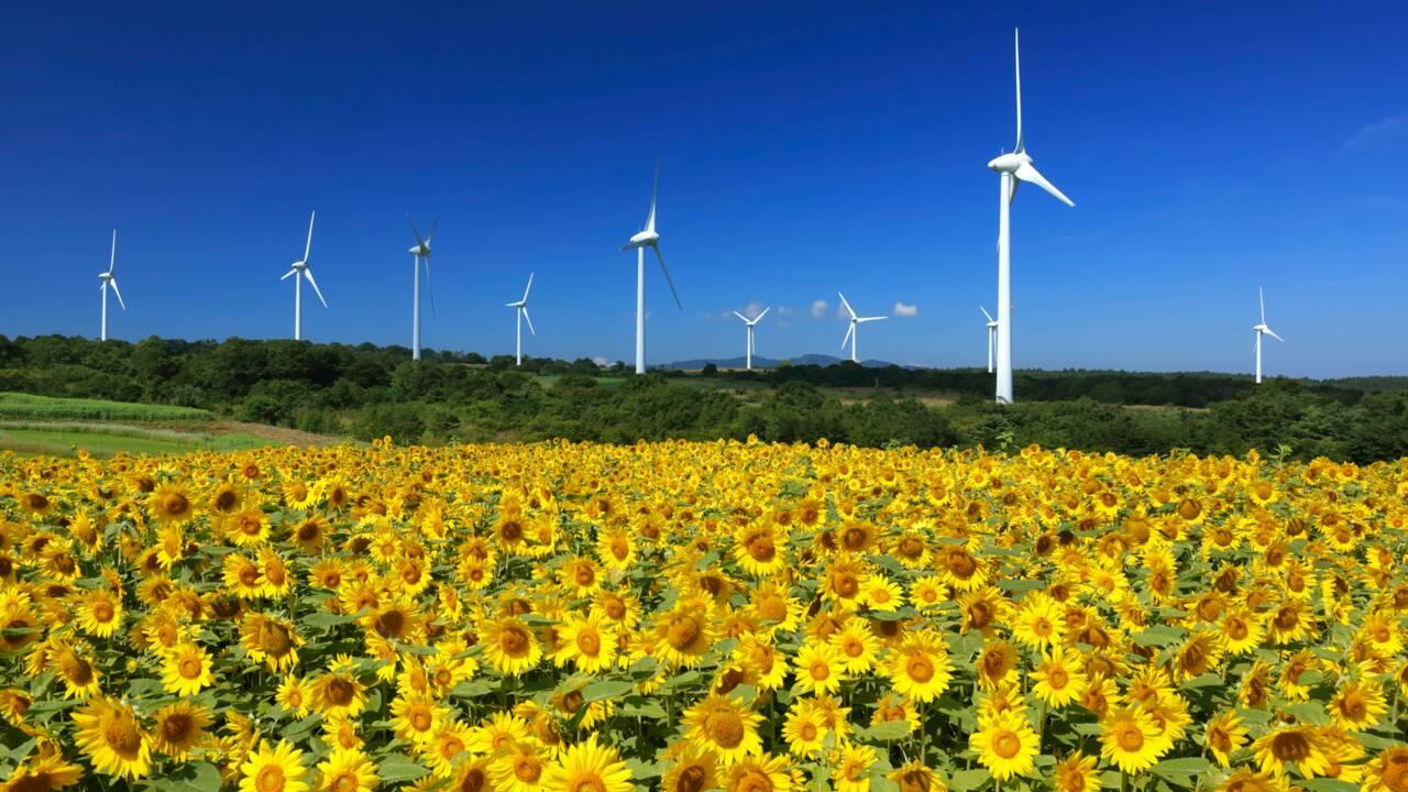 Les énergies propres, une bonne affaire