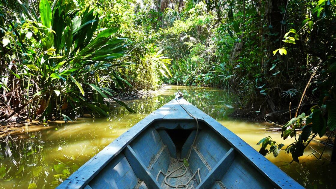L'Amazonie comme si vous y étiez
