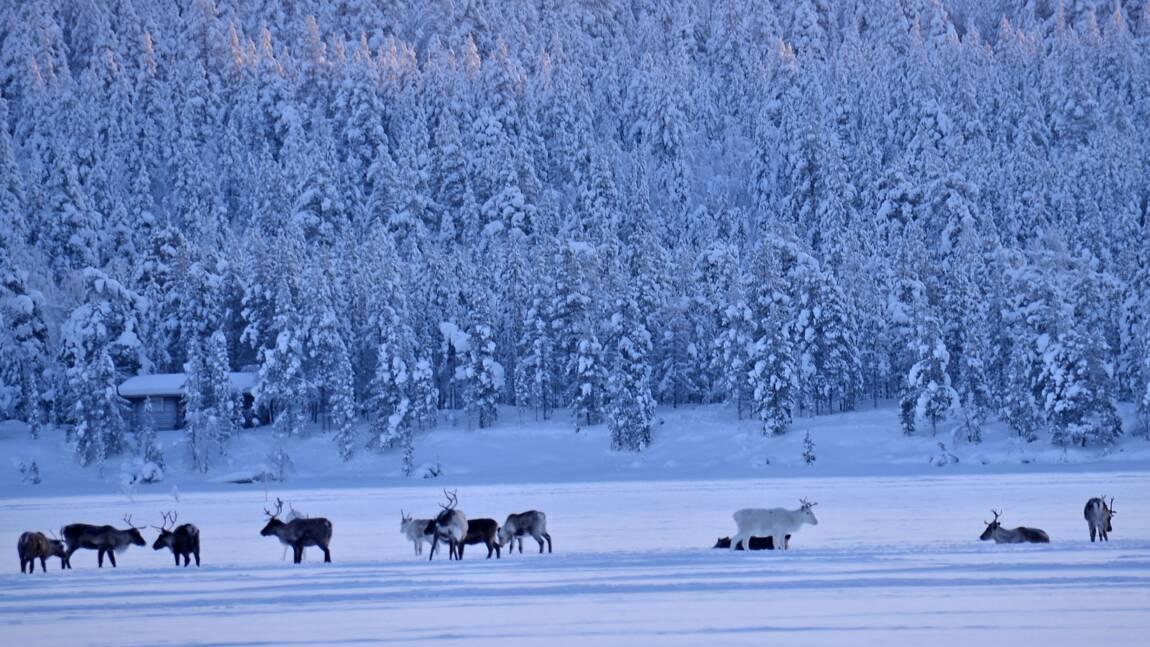 PHOTOS : la féérie de l'hiver vue par la Communauté GEO